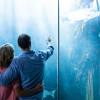 Aquarium 745