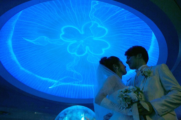 ウェディングはどこでする!?そうだ、新江ノ島水族館でやろうよ!