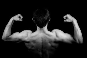 筋肉イメージ画像